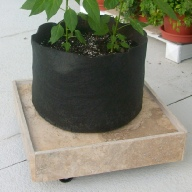Square Plant Dolly
